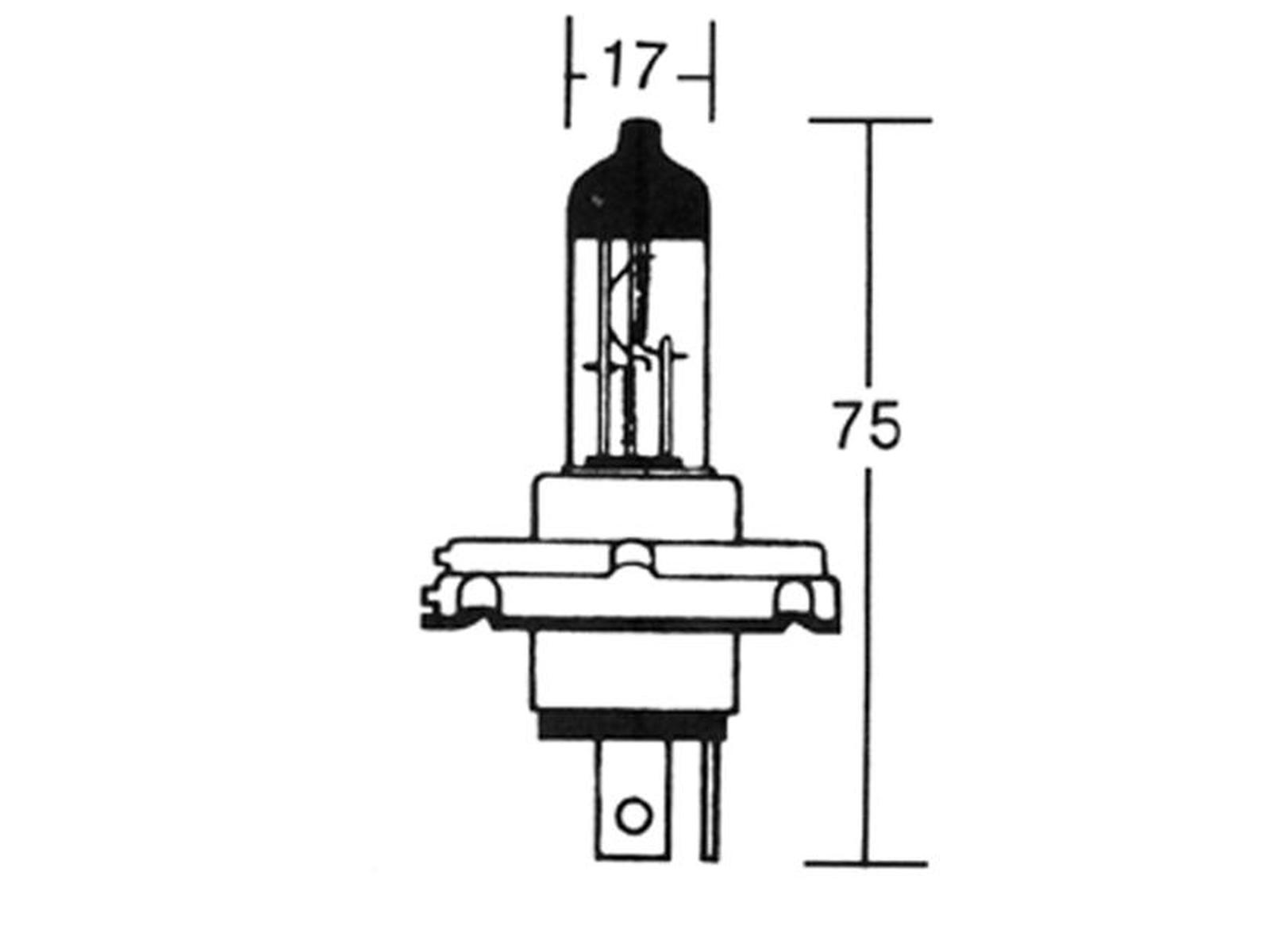 GLÜHLAMPE 12V 60/55W P45T